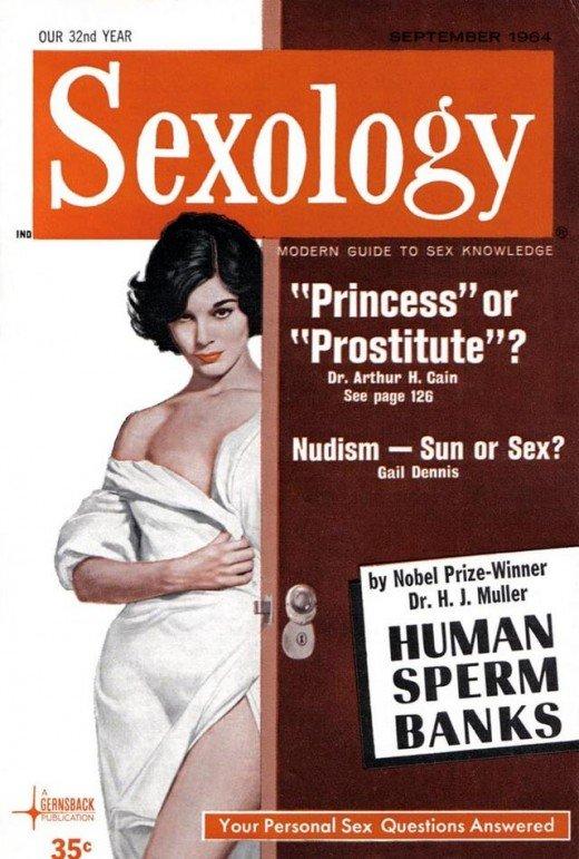 kniga-osnovi-seksologii-human-sexuality